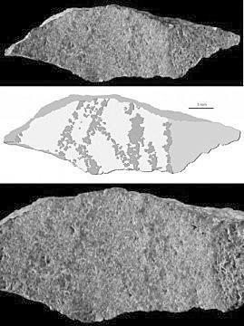 这块硅酸盐片显示了一个由九条线组成的图形,由一块赭石工具完成。图片<p align=