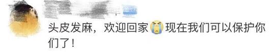 远华娱乐场最新线路,农业农村部:2020年底长江将暂定实行10年禁捕