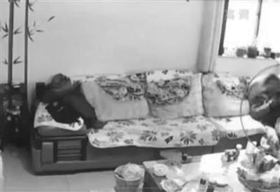 陈某某家客厅的情况被拍得清清楚楚。