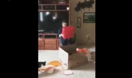 视频:泪目!美国9岁男孩收到父亲特殊生日礼物