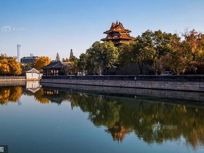 北京:故宫墙外秋色正浓 古建筑与银杏黄叶交相呼应