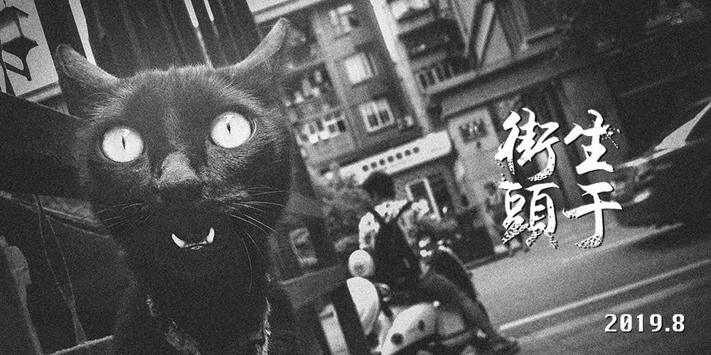 """新浪爱拍""""生于街头""""2019年8月入选作品"""