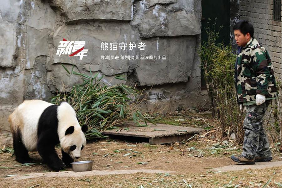 大熊猫饲养员