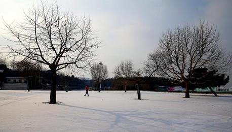 雪色跑马岭美如画