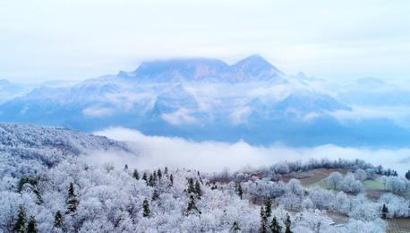 """湖北五峰""""冰林""""美景 似水晶铺满地面"""