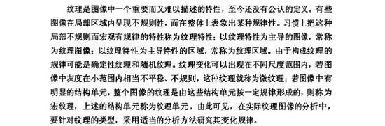 刘琳论文第二章部分段落截图