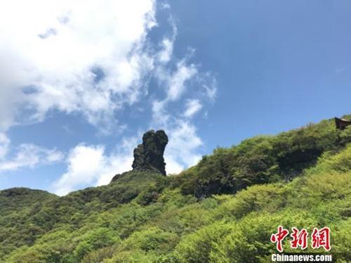 资料图: 贵州省铜仁市梵净山自然保护区。冷桂玉 摄