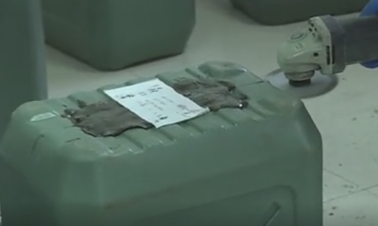 视频:1331公斤可卡因!深圳警方破获特大跨境贩