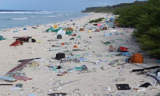 海边沙滩遍布塑料垃圾。