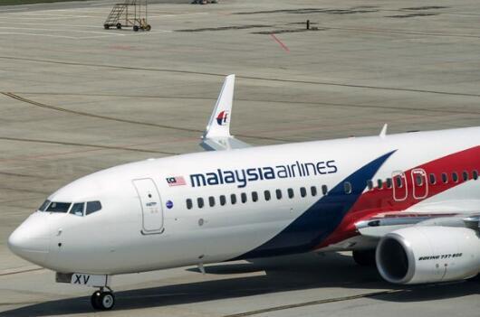 英国专家称,MH370客机残骸位于柬埔寨密林深处。(图源:Getty)