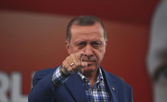 荷兰男子骂土耳其总统是猪被诉 或面临8个月监禁