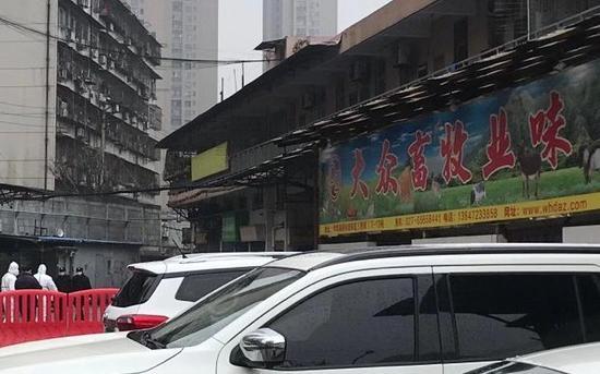 1月21日,华南海鲜市场,网传图片所涉店铺已闭店。摄影/新京报记者许雯