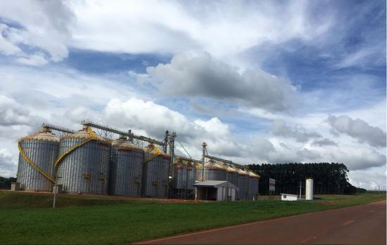 ▲仓储能力的增强也为当地农民改种谷物提供了条件,图为当地农业合作社的谷物储藏设施。(路透社)