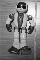 被盗走的智能机器人。