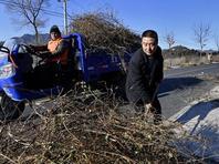 北京:严防冬季山火