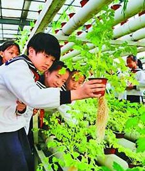 山东省滨州市博兴县第一小学的学生们在植物生态馆里学知识。新华社 图