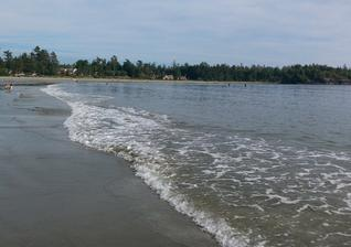 """加拿大海岸惊现穿鞋""""幽灵断脚"""""""