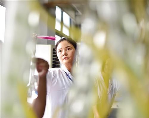 1月6日,湖北宜昌兴发集团科研人员对新开发产品进行检验。近年来,该集团以国家级企业技术中心为创新平台,将科研成果迅速转化为12个系列184个产品,成为海内外市场的抢手货。 蔡 亮摄
