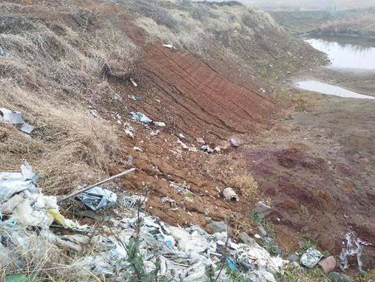 这是在安徽省铜陵市义安区一处长江堤坝内的倾倒点,凹处呈红褐色,旁边随处可见白色垃圾,刺鼻的气味随风飘来。记者采访了解到,去年5月,有人非法将62.88吨危险废物――酸洗污泥从浙江嘉善运到安徽,倾倒在这里。 记者 姜刚 摄