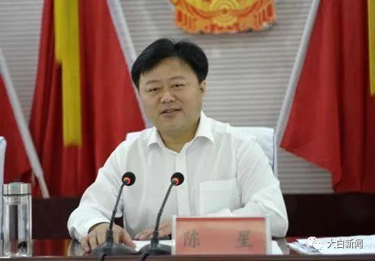 中共驻马店市委书记陈星