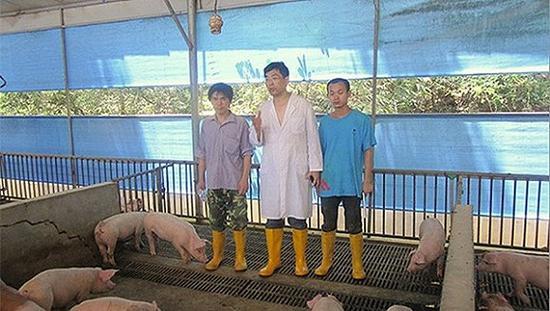 娄高明(中)在猪场诊断猪病。图片来源:家属供图