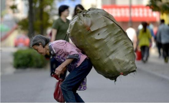 81岁老太捡垃圾养四条命 民政局将其纳