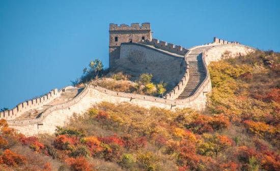 北京八达岭长城红叶岭秋季风光。 东方IC 资料图