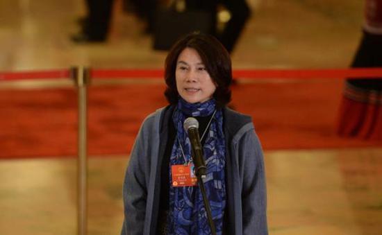 """董明珠在十三届全国人大一次会议的第二场""""代表通道""""中接受采访。东方IC 图"""