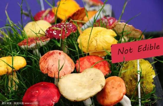 吃自制食品进了重症监护室 这7类食物自制有风险蛮村的荒唐事