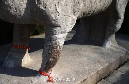 微博@北京青年报 图