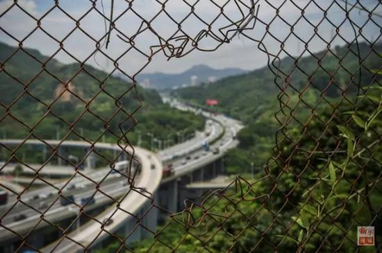 """透过深圳""""二线""""铁丝网拍摄的南坪快速路和福龙路(2015年7月17日摄),如今铁丝网内外的发展几乎无异。"""