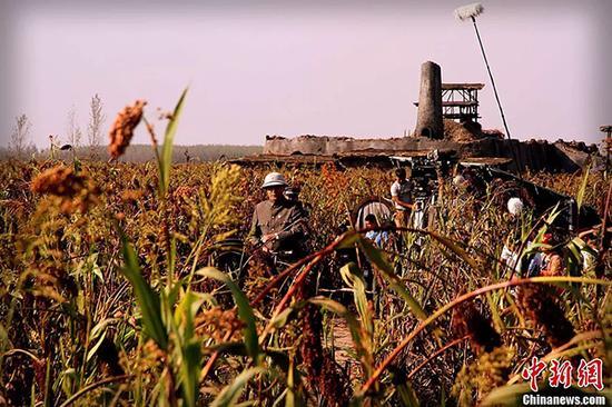 电视剧版《红高粱》在山东高密开拍。 中新网 资料图