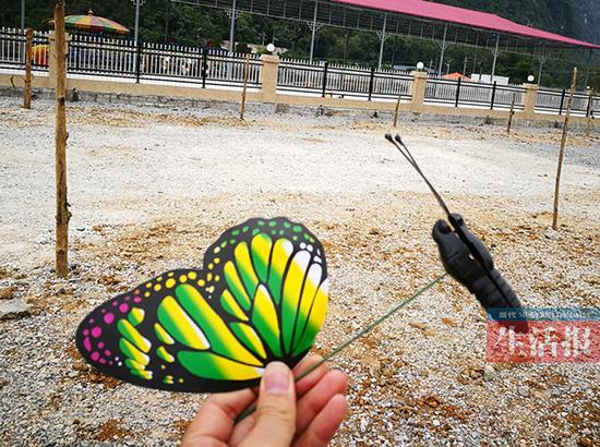 12月11日记者在现场捡到残缺的塑料蝴蝶。