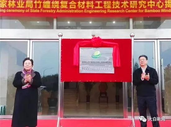 竹缠绕复合材料工程技术研究中心揭牌仪式