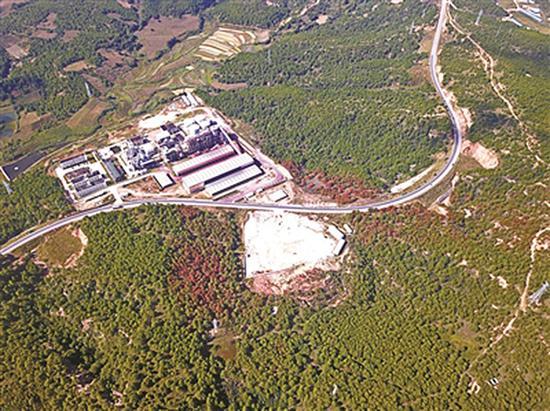 变红、枯死的松树集中在工厂周边,与满山绿色针叶林形成明显差异。 本文图均为北京青年报 图