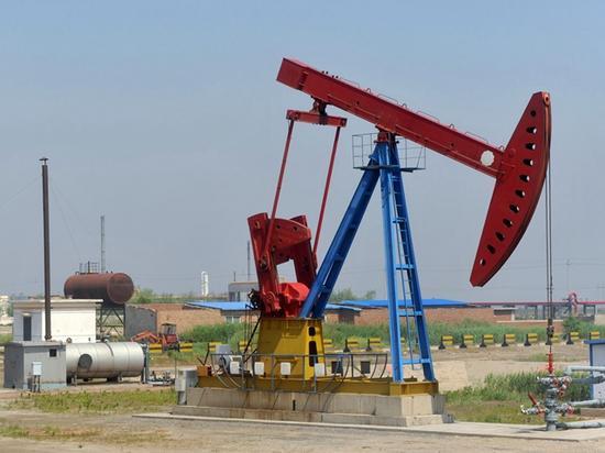 渤海湾滦南滨海上的抽油机。摄影/章轲