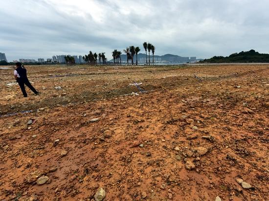 一片围填海后的裸露土地。摄影/章轲