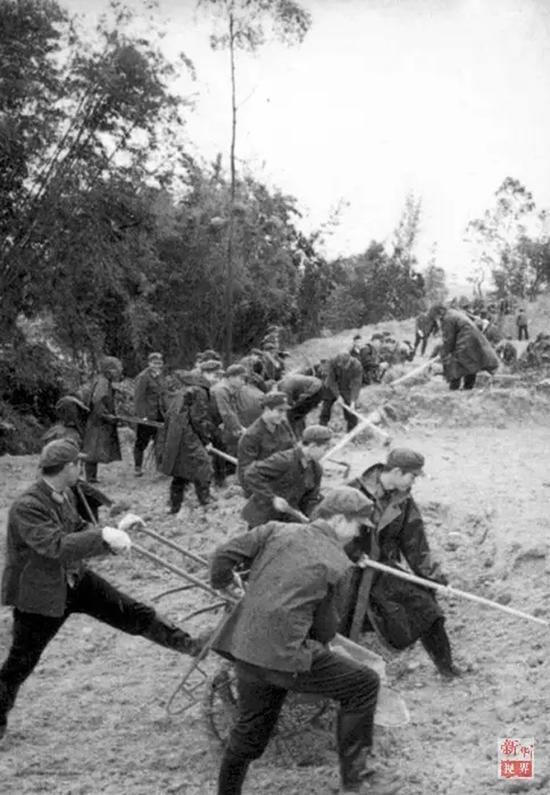 """建设深圳""""二线""""的广东边防总队官兵。"""
