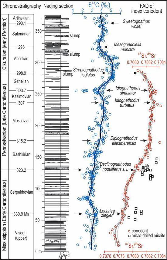 纳庆剖面柱状图及碳、锶同位素 来源:中科院南京古生物所