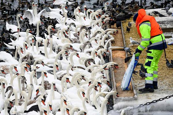 【lol亚博开盘】新京报:2019中国北京世界园艺博览会正式开园迎..
