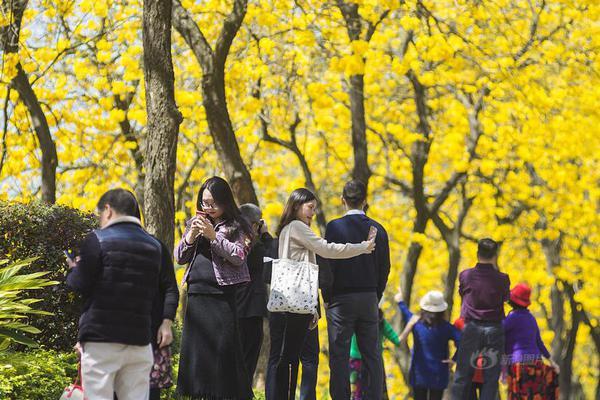 渤海人寿去年亏近14亿 今年从四方面提高投资收益