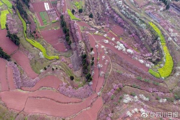 广州疾控中心:境外回国飞机上应戴N95口罩