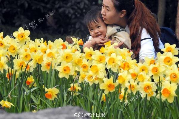花卉的最佳观赏范围是()