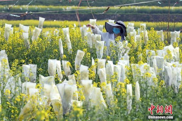 北京多地区气温跌破历史极值