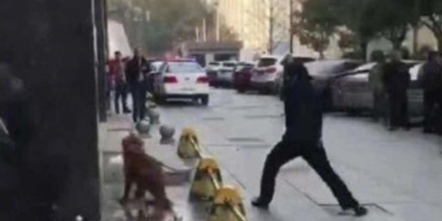 全民话题:金毛咬人被棒杀,你是否支持民警处置方式?