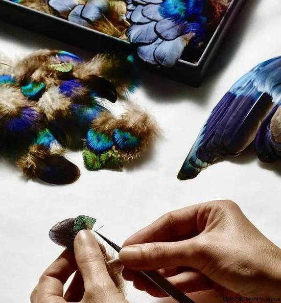 首先要严格筛选羽毛的色彩层次、密度与质地,选择合适的羽毛。