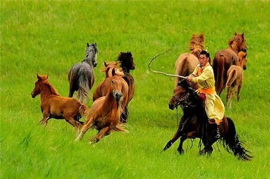 带你走进快步发展的内蒙古