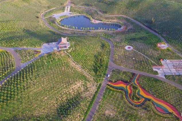 沙坑改造变身生态公园特色景观