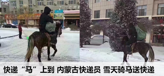 """快递""""马""""上到 内蒙古快递员骑马送快递"""