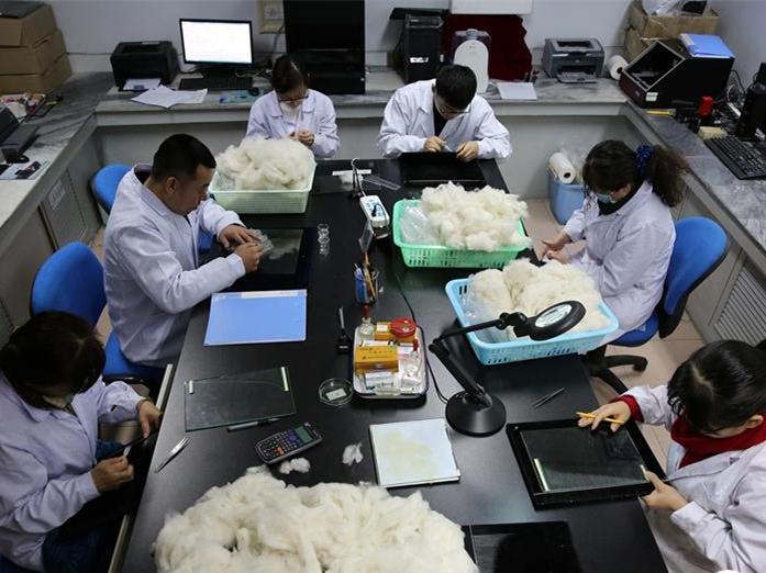 内蒙古毛绒主产标准化检验